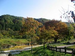 秋の藤原湖