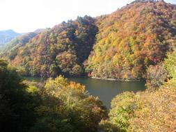 洞元湖の紅葉