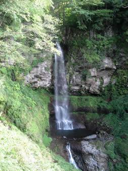 マイナスイオン一杯の滝